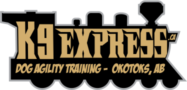 K9 Express